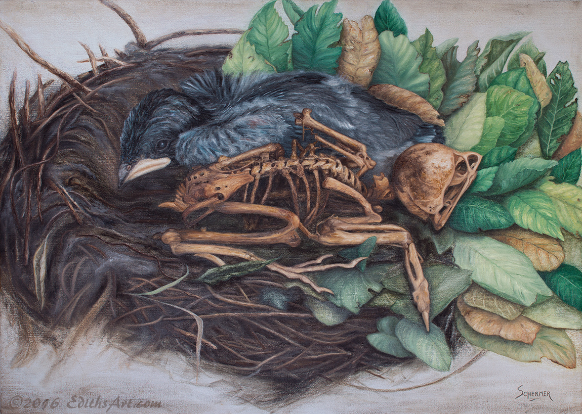 Twins, oil painting of two birds one alive and one dead, by Edith van Duin-Schermer, 2016